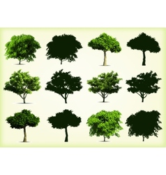 Collection green trees vector image