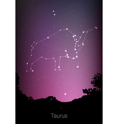 Gemini zodiac constellations sign with forest vector