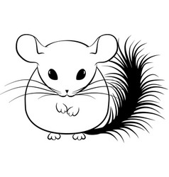 line art stylized chinchilla vector image