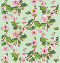 Sakura blossom ornament vector
