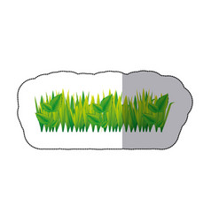 color grass with leaves icon vector image vector image
