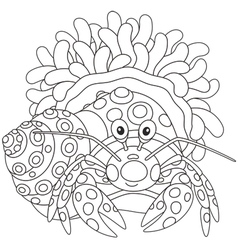 Diogenes-crab with an actinia vector image