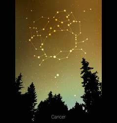Canser zodiac constellations sign with forest vector