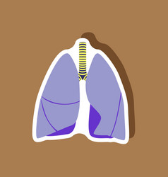 Lungs and trachea paper sticker on stylish vector