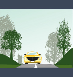 Road in wood vector