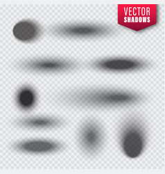 shadows set on transparent background vector image