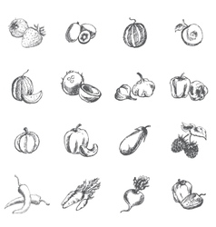 Vegetables berries and fruits vector image vector image