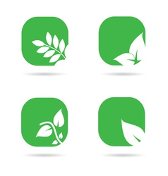 leaf icon in green color vector image