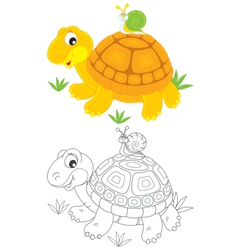 Tortoise and snail vector image vector image