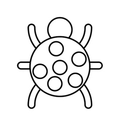 bug animal isolated icon vector image