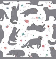 Cartoon cat characters seamless pattern scottish vector