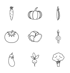 Fresh vegetables icons set outline style vector image