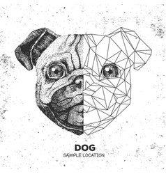 Hipster animal realistic and polygonal pug-dog vector