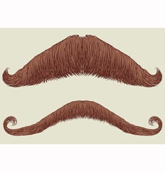mustache set vector image