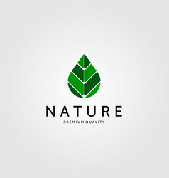 nature leaf on drop water logo green color icon vector image