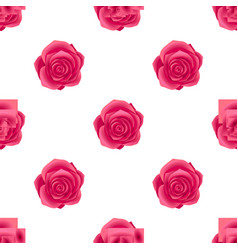 seamless pattern with roseblossom isolated vector image