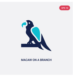 two color macaw on a branch icon from culture vector image