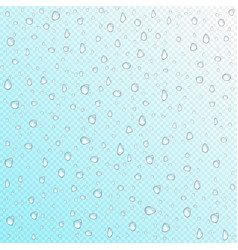 waterdrops on transparent background vector image