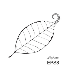 Beautiful leaf isolated vector