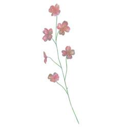 drawn watercolor flower vector image