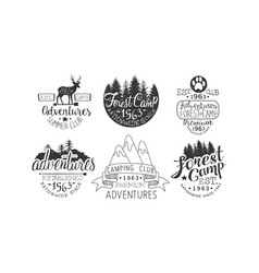 Forest camp premium retro labels set camping club vector