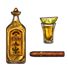 Mexican tequila lime drink and cigar sketch vector