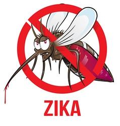 mosquito zika cartoon vector image