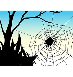 Silhouette spider on web vector image