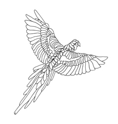 Zentangle stylized macaw parrot Sketch for tattoo vector image vector image