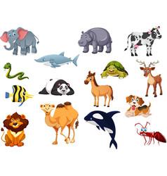 Animals set1 vector