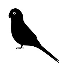 Budgerigar parrot silhouette icon in flat style vector