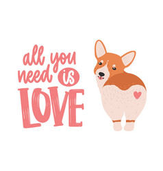 cute welsh corgi with heart on his back and all vector image