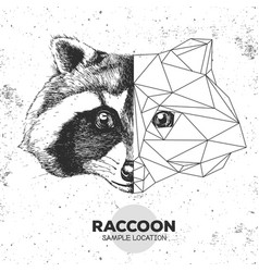 Hipster animal realistic and polygonal raccoon vector
