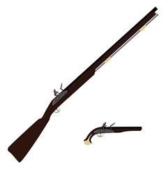 Musket rifle and gun vector image