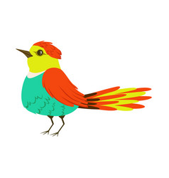 small colorful tropical bird vector image