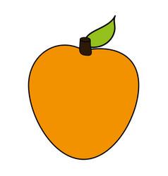 melon sweet fruit vector image