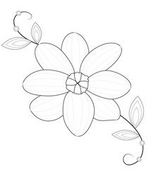 Flower line art picture on white background vector