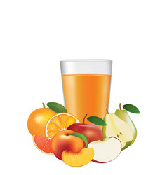 juice glass with fruits vector image