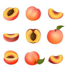 Peach icons set cartoon style vector