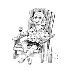 Poodle sketch on adirondack chair vector