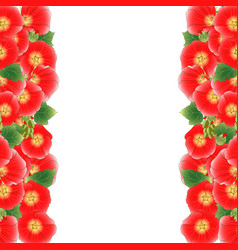 red alcea rosea border - hollyhocks vector image