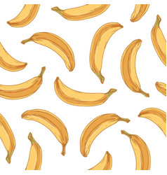tropical seamless pattern with whole banana fruits vector image