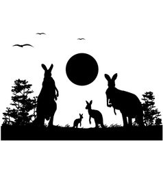 silhouette of the kangaroo family vector image vector image