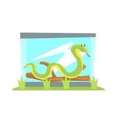 Long Boa Snake In Glass Snake Terrarium In The Zoo vector