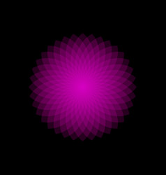 Mathematical symbol purple lotus logo mandala vector