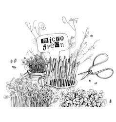 Monochrome hand drawn micro green plant card vector