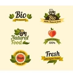 Set of vintage style elements for labels badges vector image