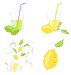 Lemon and lime juice vector image