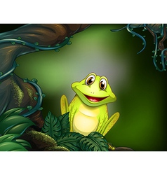 A green frog in the jungle vector image