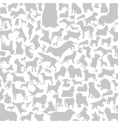 Dog a background vector image